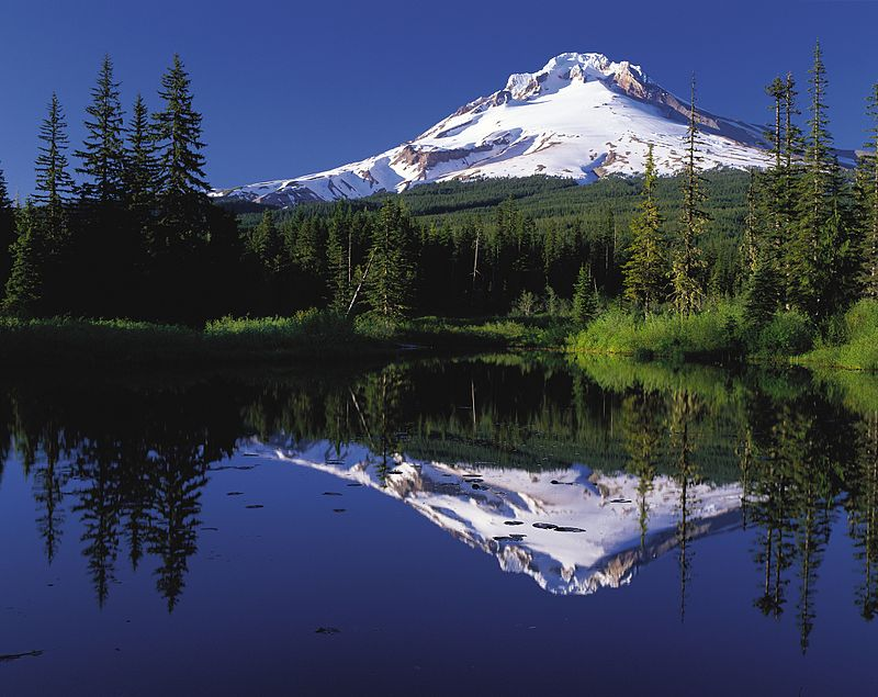 Writing the PNW: A Literary Tour of the Pacific Northwest