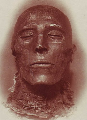 The Mystery of Mummy Paper